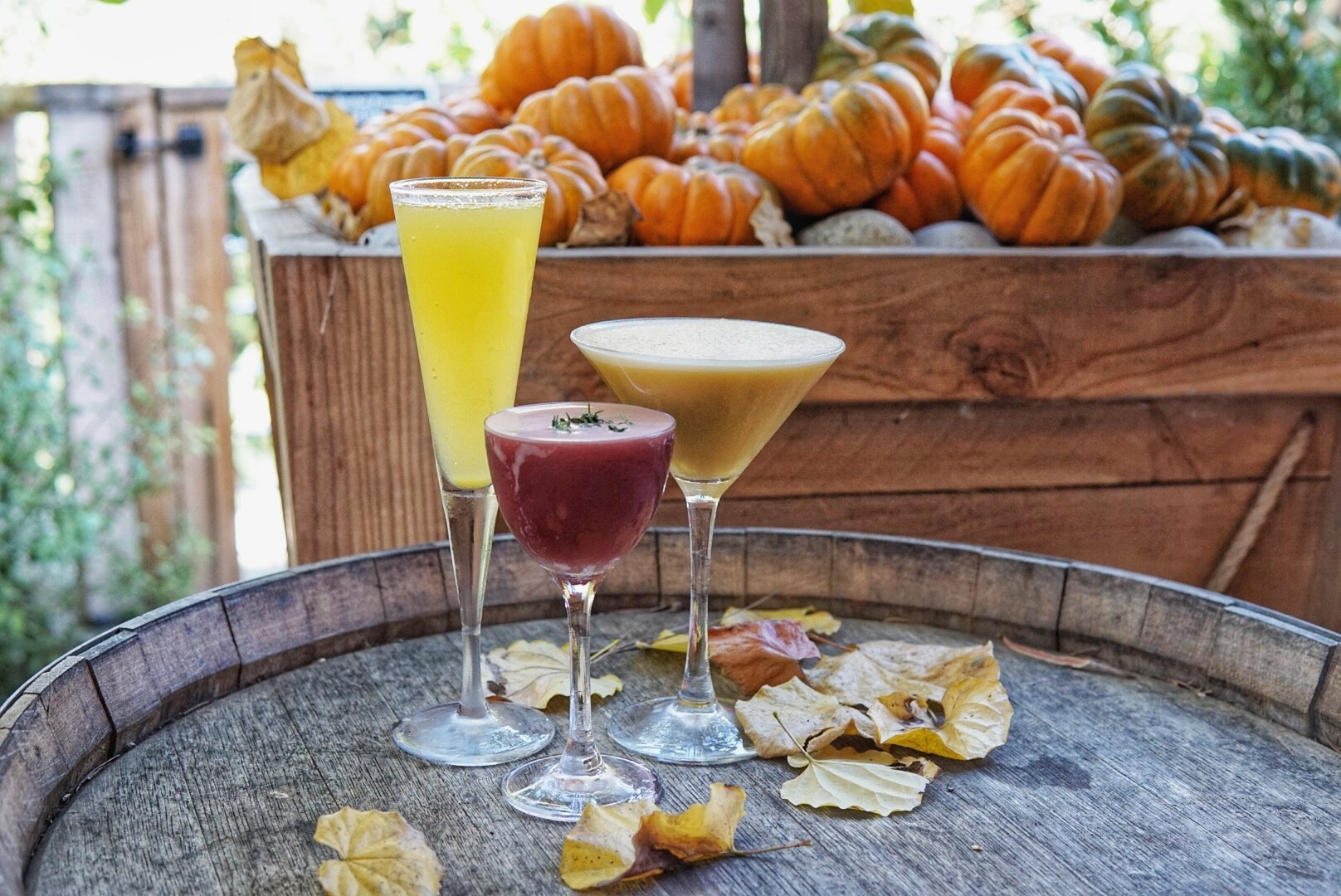 This Orange County Restaurant is a Must Visit During the Holidays!