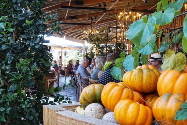 Farmhouse Restaurant Fall