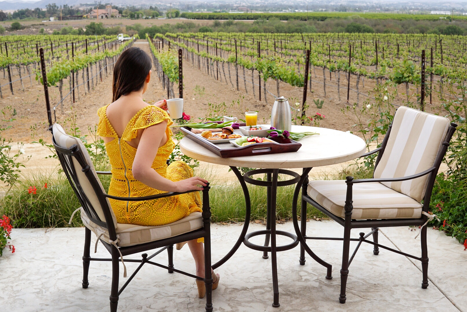 Walk Off Your Patio And Into The Vineyards At This Beautiful Temecula Hotel