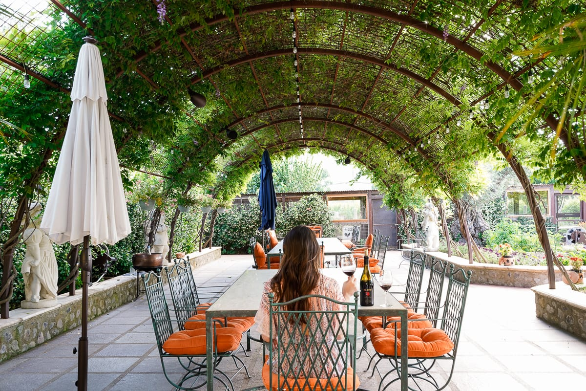 A Feast For The Eyes: The Best Napa Food and Wine Pairing You've Ever Seen