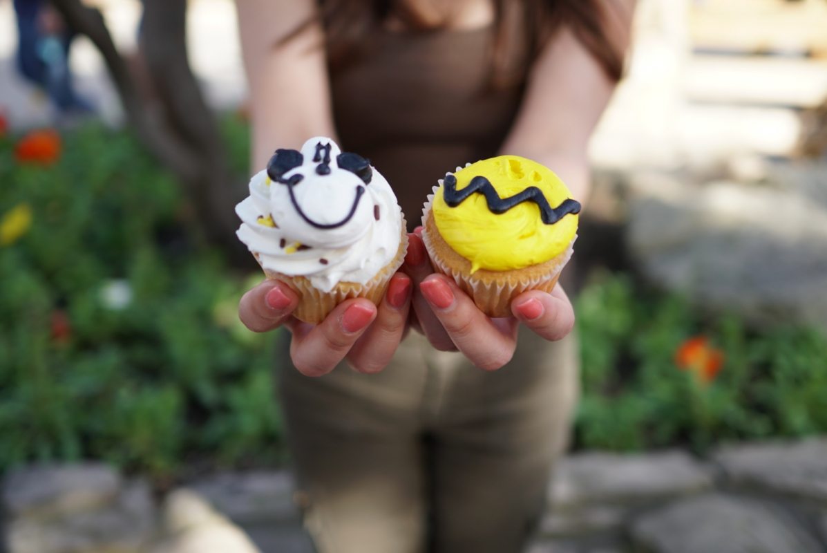 knotts snoopy cupcakes