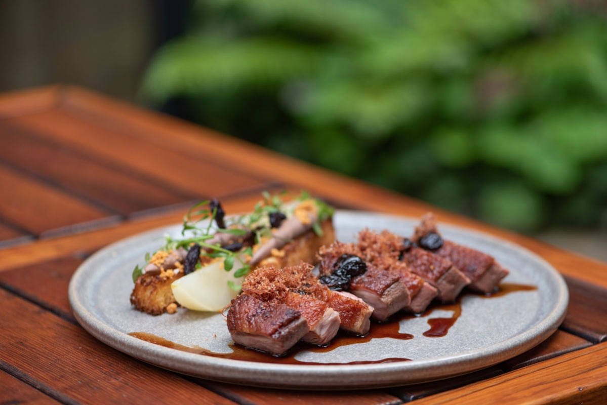 Forage-Vancouver-Duck