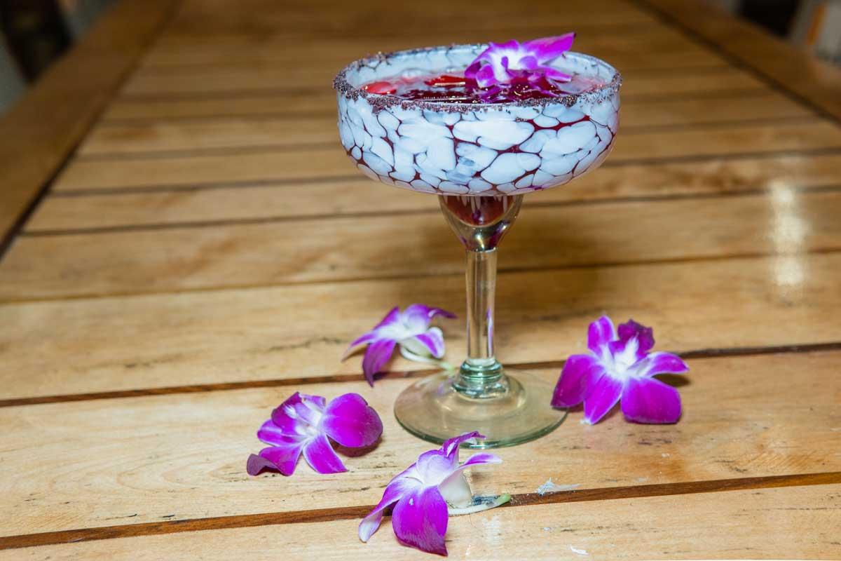 Taco-Rosa-Hibiscus-margarita