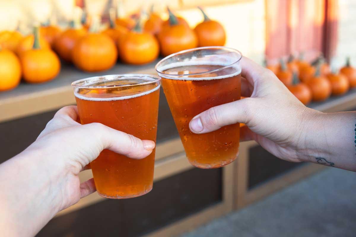 Knotts-Pumpkin-Cider