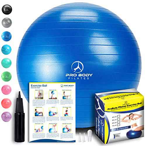 home-gym-Exercise-Ball-Home-Gym