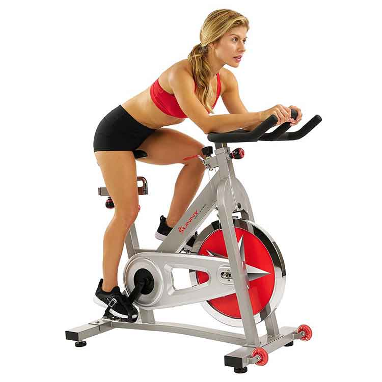 Home-Gym-Sunny-Stationary-Bike